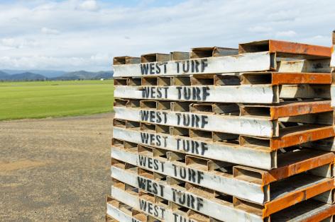 pallets - WestTurf