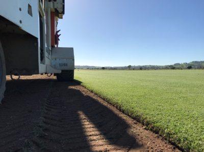 Preparing lawn - WestTurf